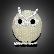 Soulful Trendy Owl Brooch